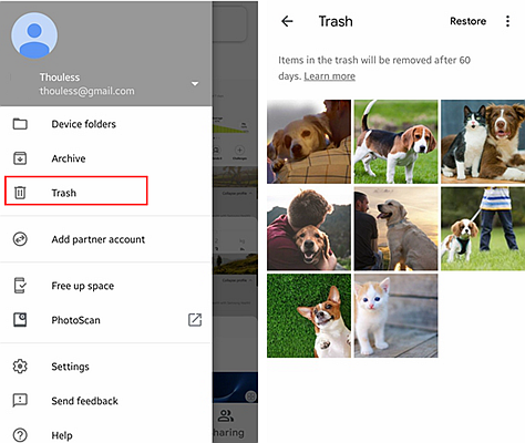 Recover from Google Photos