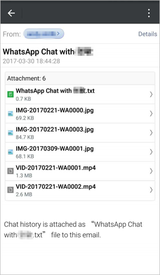 WhatsApp Email Chat Fulfill Email
