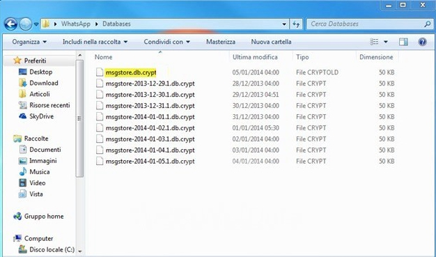 WhatsApp Local Backup File Detail