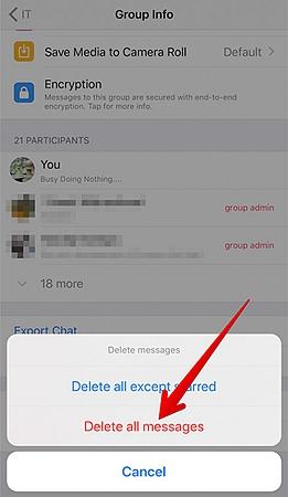 Delete Group WhatsApp Chat