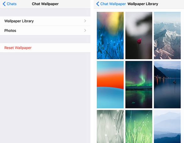 How To Change WhatsApp Chat Wallpaper On Android And IPhone