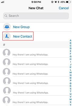 WhatsApp Contact 2