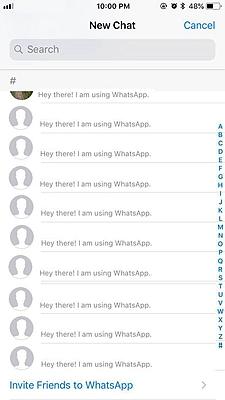 WhatsApp Contact 4