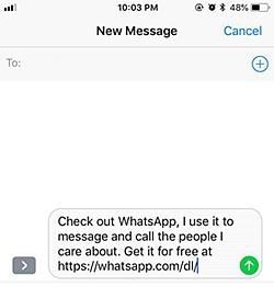 WhatsApp Contact 6