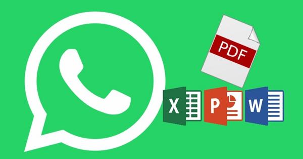 WhatsApp Transfer File
