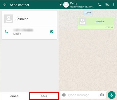 WhatsApp Share Contact 3