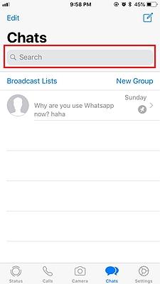 WhatsApp Search Chat 1