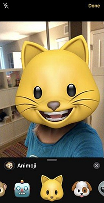 iPhone Facetime Animoji