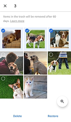 Recover from Google Photo 2