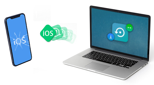 Any Ios System Repair Pro Download