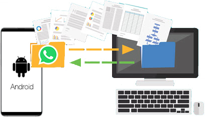 WhatsApp Transfer Android to PC