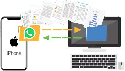 WhatsApp Transfer iPhone to PC